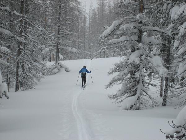 Linda skiing up Vista Butte