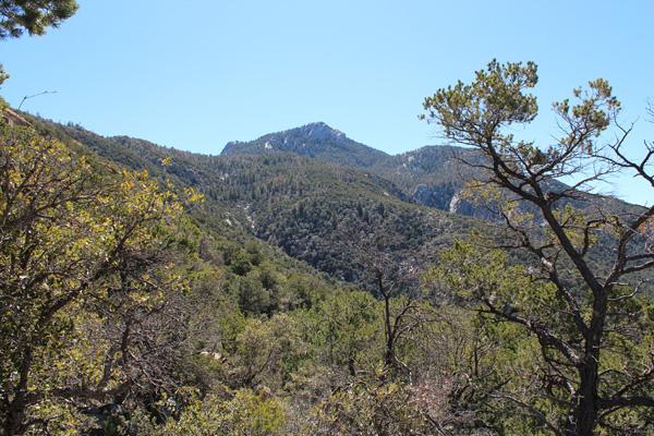 Rincon Peak from Rincon Peak Trail