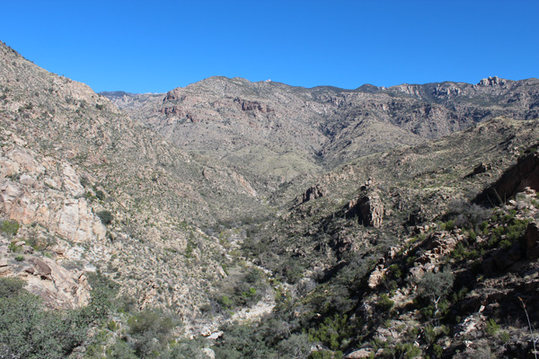 Upper Sabino Canyon from Sabino Trail
