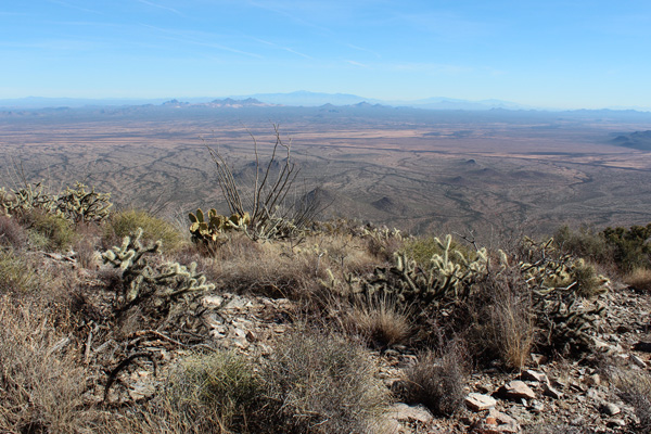 Looking east from Gu Achi Peak towards the Silver Bell, Santa Catalina, and Rincon Mountains.