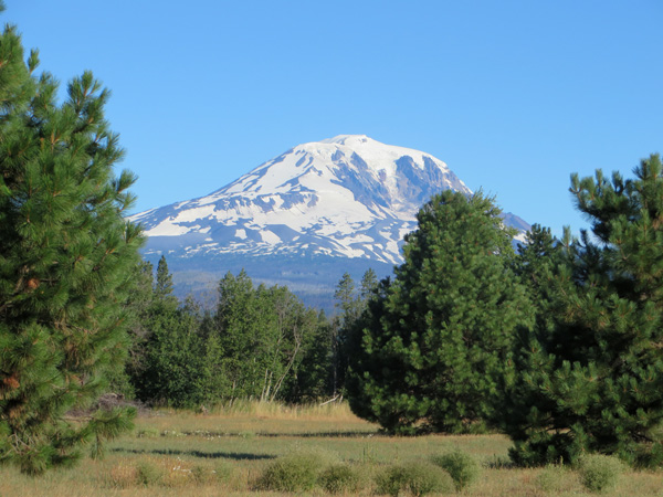 Mount Adams from Glenwood, WA