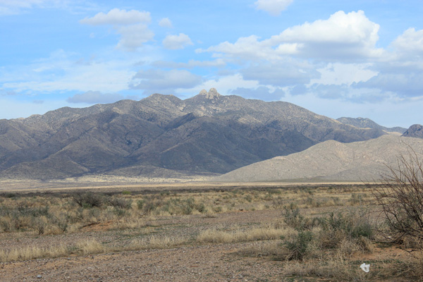 Dos Cabezas Peaks from Arizona Highway 186 SE of Willcox