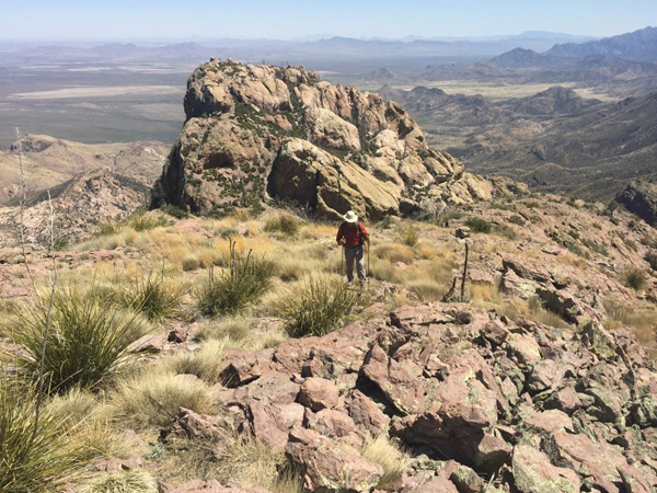 Approaching the Cochise Head nose summit above the forehead (Michael Berry)