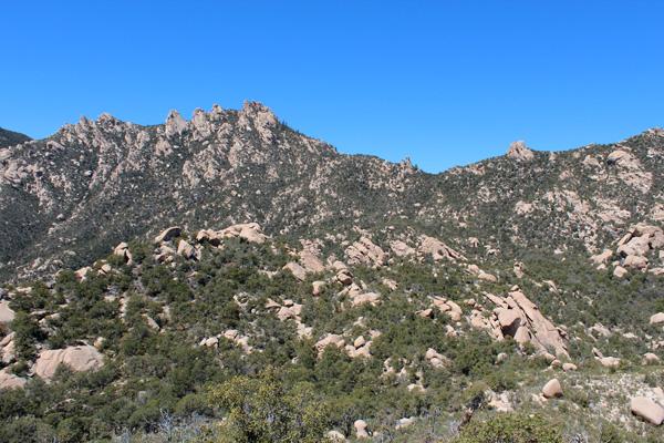 Pinnacle Ridge from Point 6420
