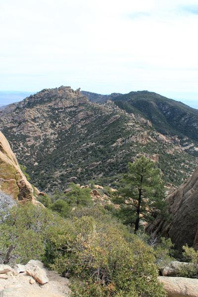 Looking east across Pinnacle Ridge towards Cottonwood Mountain.