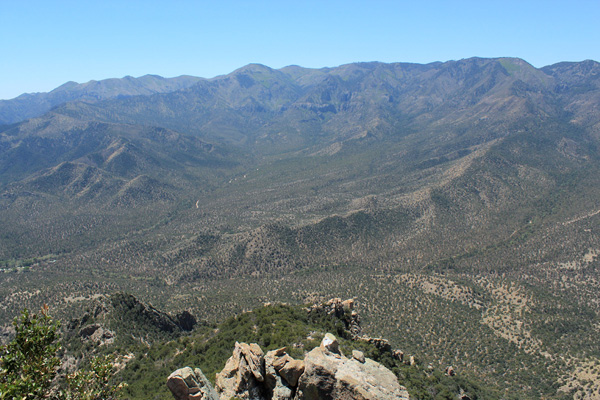 The Chiricahua Crest rising to the west of Silver Peak