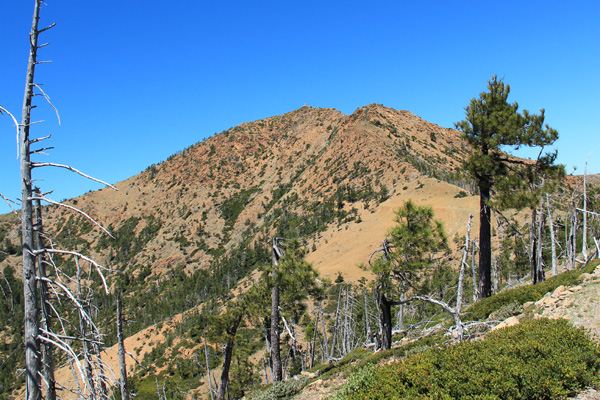 Pearsoll Peak from high on the trail