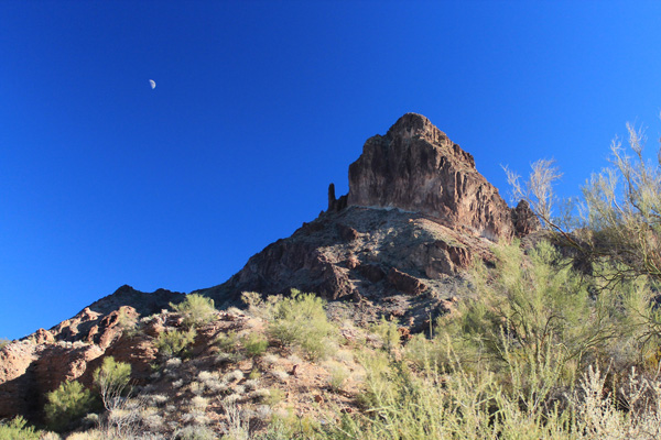 Looking up at Castle Dome Peak from the wash