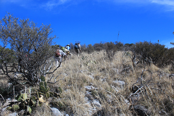 Climbing the steep WSW Ridge of Apache Peak