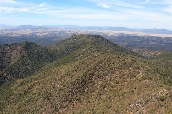 Lyle and Peterson Peaks below Huachuca Peak summit