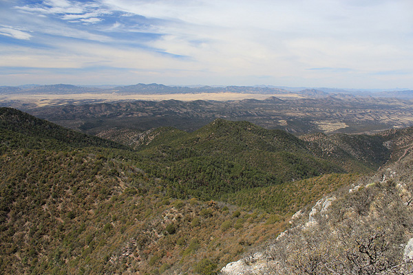 The Patagonia Mountains from Huachuca Peak