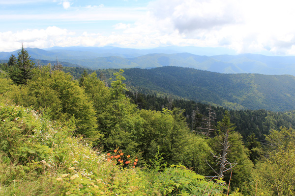 View towards the southeast from high on the Clingmans Dome Road