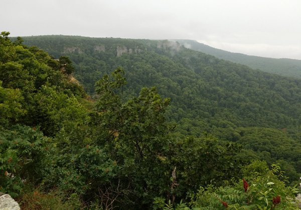 View of cliffs from Cameron Bluff Overlook