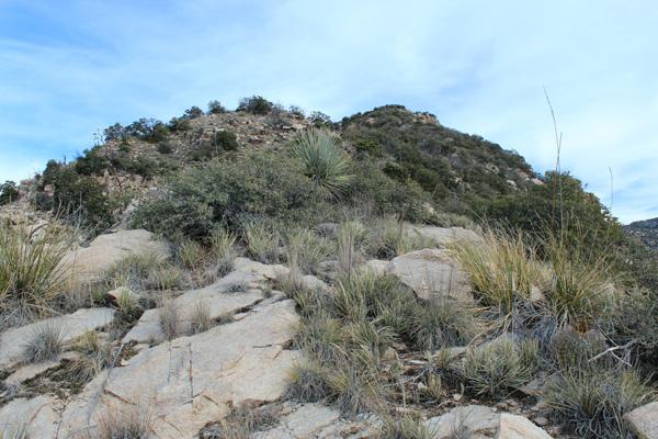 Climbing towards the Prominent Point summit, still hidden from view
