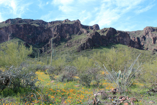 The east face of South Mountain from near the trailhead