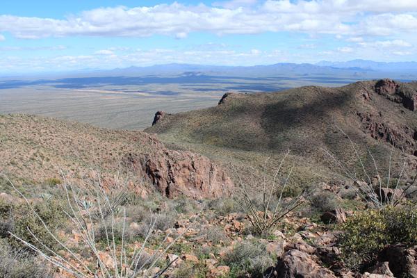 Northeast across the upper saddle towards the Comobabi Mountains