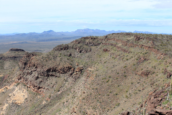 The Ajo Range to the west from the Mesquite Mountains highpoint