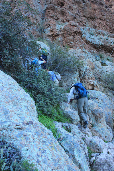 Scrambling up the Northwest Gully in morning shade