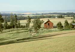 Countryside south of Deary, Idaho
