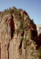 Traverse on Angels Landing