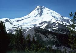 Mount Hood from Cloud Cap Campground