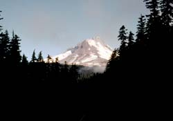 Mt. Hood from Forest Road 48