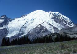 Mount Rainier from the Sunrise Visitor Center