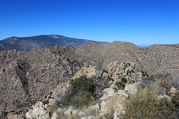 Mica Mountain (left) and Forest Hill (right), highpoints of the Rincon and Little Rincon Mountains