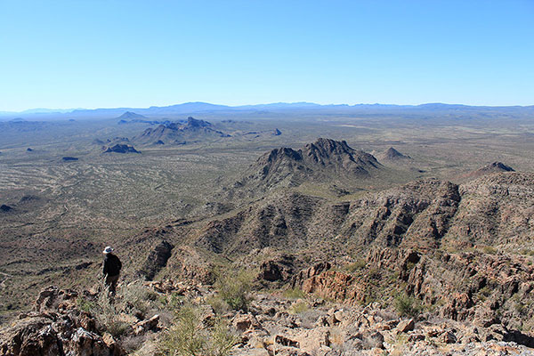 Looking west towards Cimarron Peak and the distant Sauceda Mountains