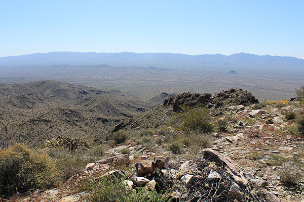 The Harcuvar Mountains and the SE Canyon from the Buckskin Benchmark summit