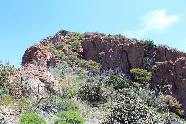 The rocky and brushy ramp leading above the cliff band
