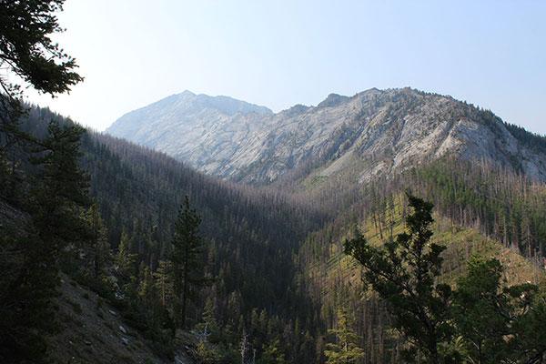 A view of Sacajawea Peak's Northwest Ridge from the Thorp Creek Trail