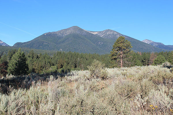 Twin Mountain from Bulger Flat Road