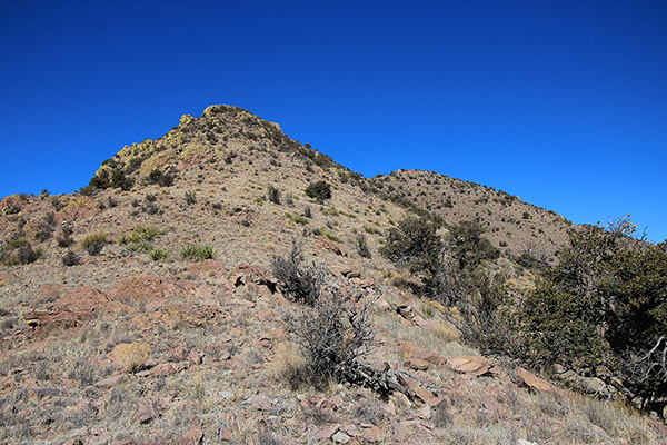 From the upper south ridge I finally saw the summit of Greasewood Mountain to the right and traversed directly towards it