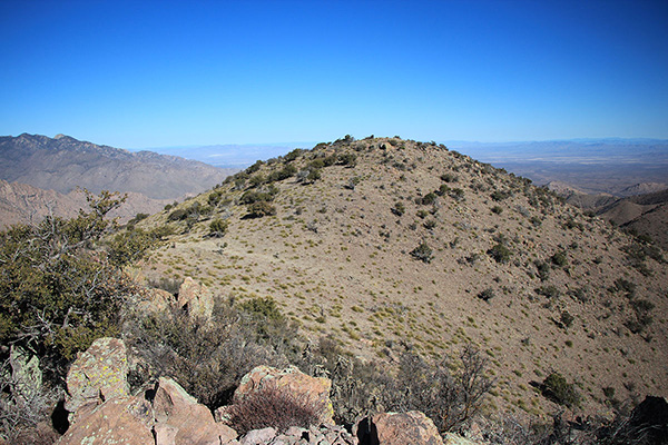 Looking northeast to the summit of Greasewood Mountain from Grease Benchmark