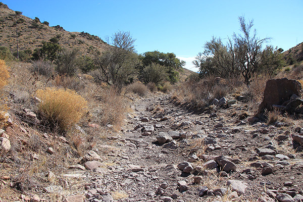 Much of the road was in good shape, but occasionally I encountered rocky sections