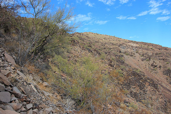 We traversed slopes below cliffs until we found a steep but short climb to the ridge above us