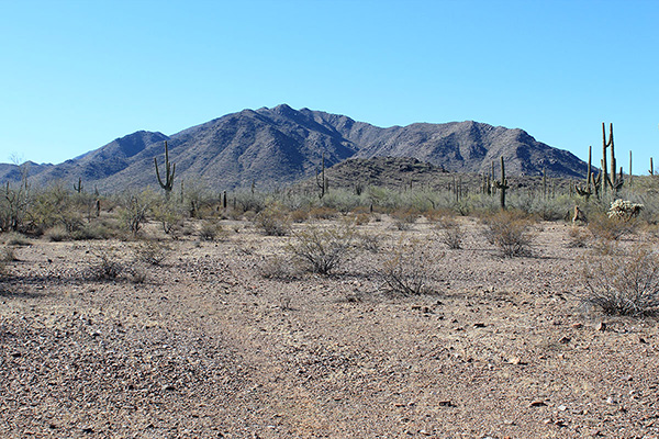 Prieta Peak from where we left the road and began hiking directly towards its north slopes
