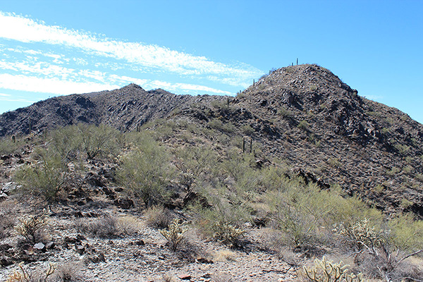 """We approach the """"solitary saguaro"""" subpeak; is the peak visible left of center ahead the summit?"""