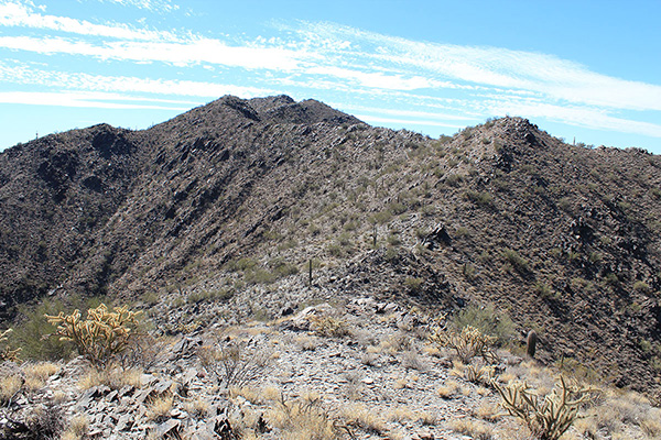 """From the """"solitary saguaro"""" subpeak I see another peak rising beyond the false summit."""