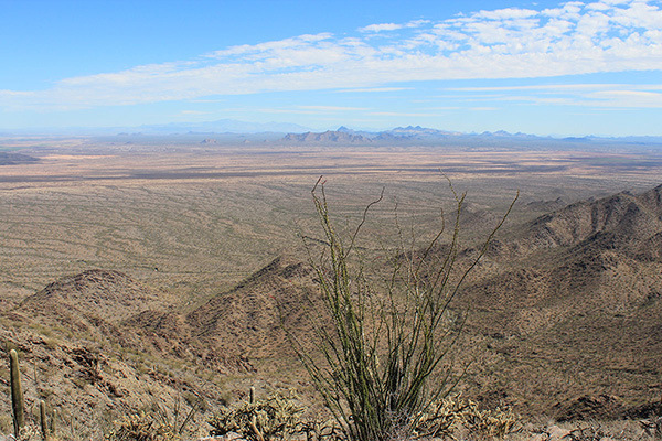 The West Silver Bell, Silver Bell, Waterman, and Santa Catalina Mountains are visible ESE from Prieta Peak
