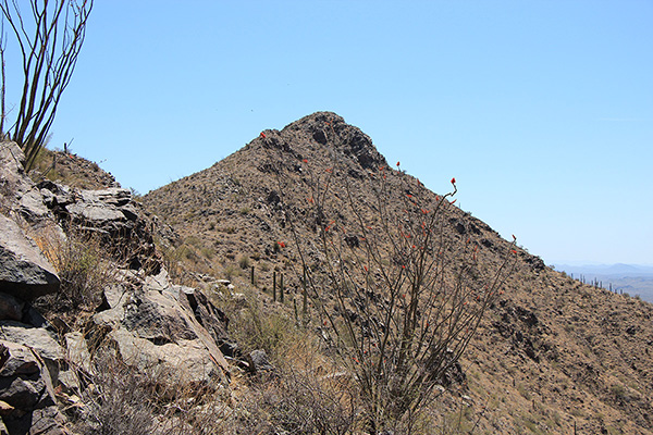 Maricopa Peak comes into view from below the subsidiary summit