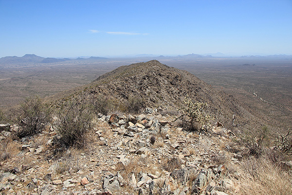 The view southeast along the spine of Javelina Mountain from the Maricopa Peak summit