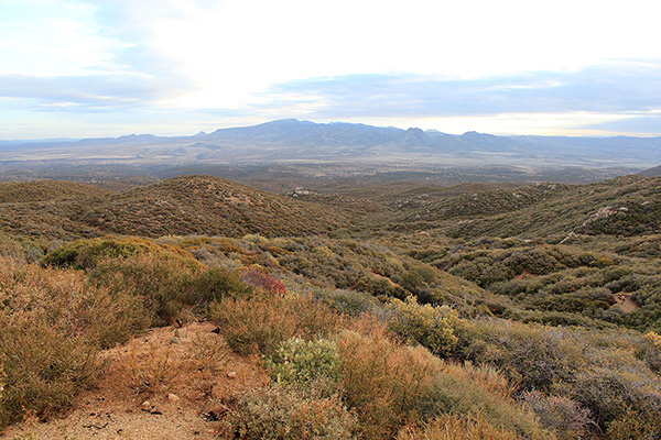 Our first view of Mohon Peak from Bogles Ranch Road and the Aquarius Mountains