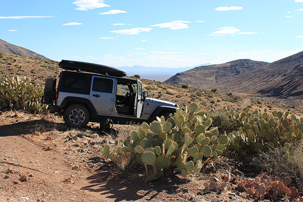 Matthias and I park our cars amongst the prickly pear