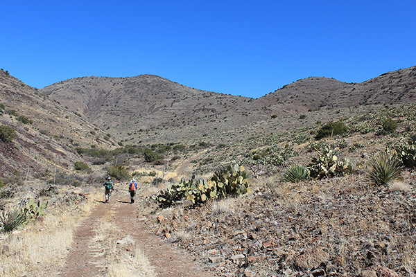 Hiking up Poppy Canyon to the facing slopes leading to the summit ridge