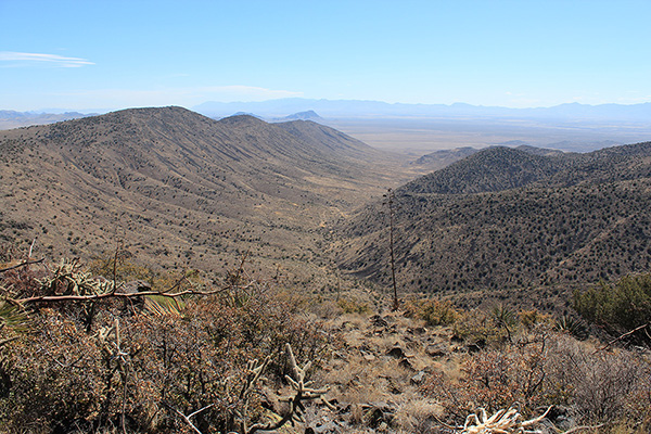 Poppy Canyon and the distant Chiricahua Mountains to the south from the summit