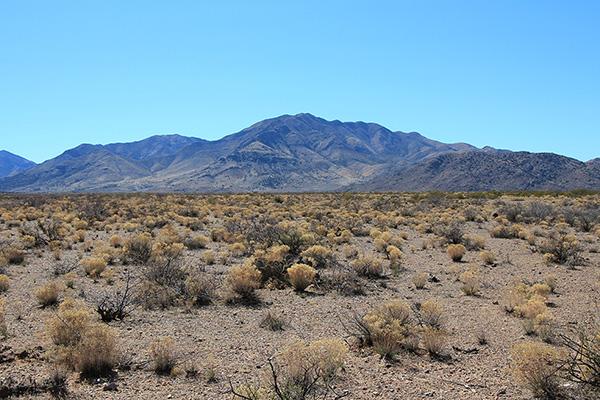 Wood Mountain from Wood Canyon Road south of San Simon, Arizona