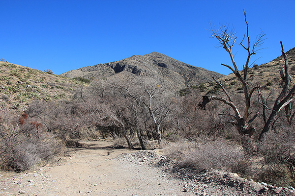 Our campsite in Wood Canyon with Dunn Springs Mountain beyond