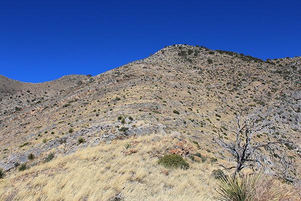The upper ESE Ridge climbs to intersect the long ENE Ridge